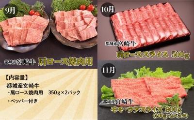 Miyako03_400x248